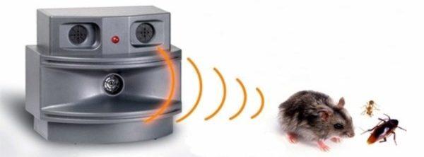 борьба с грызунами ультразвуком