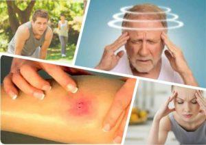 симптомы после укуса гадюки